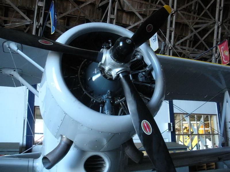 Grumman J2F-6 Duck (3)