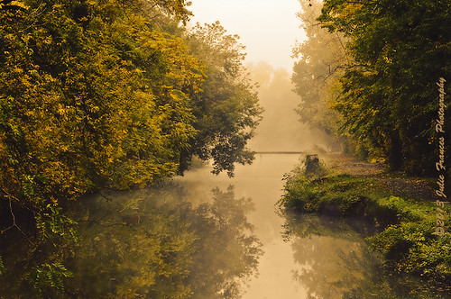 mist beauty fog landscape canal soe bikeway champlaincanal saratogacounty waterfordny mygearandme mygearandmepremium mygearandmebronze mygearandmesilver mygearandmegold ringexcellence towbath