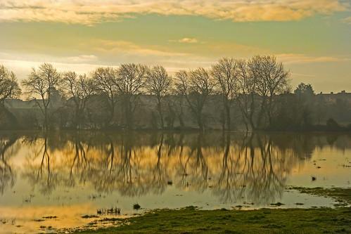 morning england mist sunrise day cloudy somerset bridgwater meads blinkagain