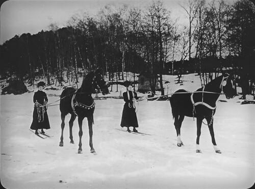 Skidåkning efter häst. | by Tekniska museet