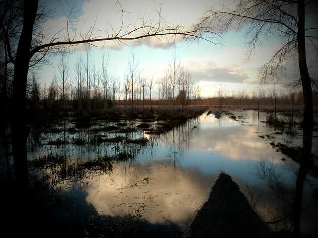 Une route de campagne coupée par l'inondation de la Vienne près de Chinon (Indre-et-Loire).