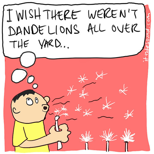 dandelions | by Mike Riley