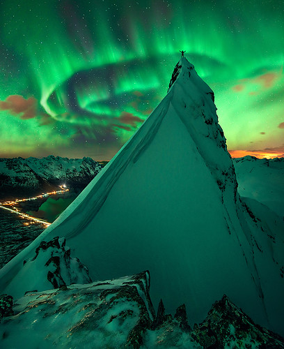 In Green Company | by Max Rive - Photo Tours