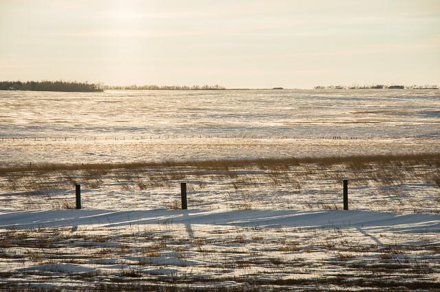 prairies in winter