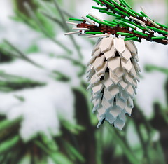 Pine cone by CeciΙie