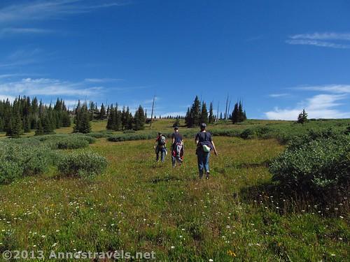 Hiking across Amphitheater Peak, Flat Tops Wilderness, Colorado