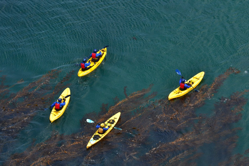 from the above - Channel Islands Santa Cruz kayaking   Flickr