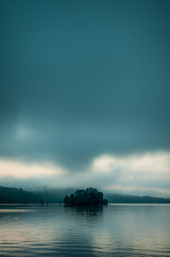 trees lake nature water fog clouds landscape island moody tennessee relaxing peaceful overcast norris placid
