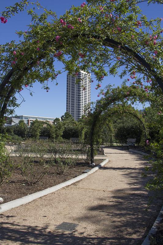 McGovern Centennial Gardens_32