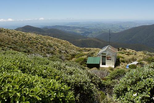 newzealand tramping tararua cattle ridge leatherwood alpine tops hut wairarapa