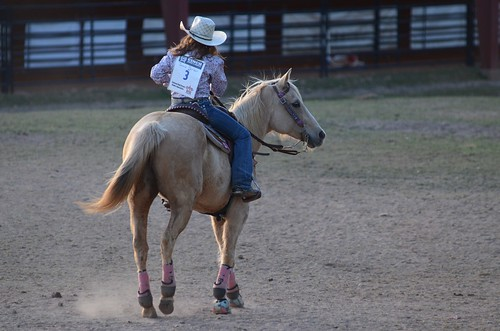 rodeo qcarena georgiahighschoolrodeoassociation