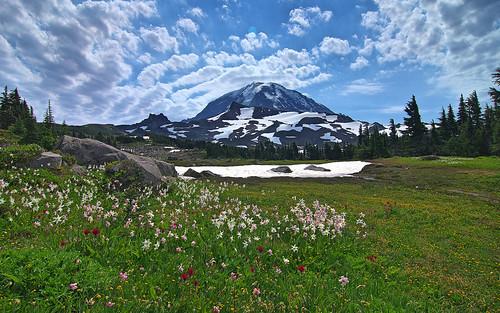 Mt. Rainier from Spray Park
