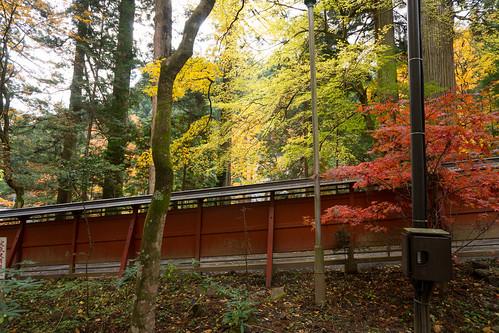 DSC_A99_02751.jpg | by jorge.kashima
