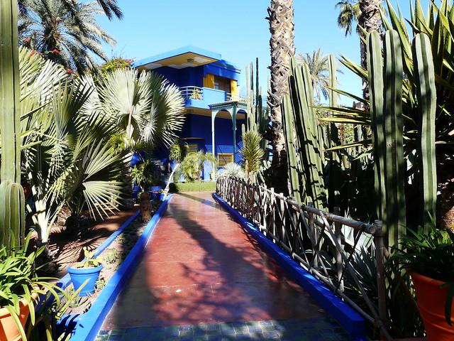Maroc, Marrakech, Le Jardin de Majorelle, حديقة ماجوريل,