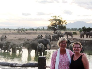 "Two ladies smiling at the camera with more than 20 Elephants on the background at the hippo pool in Mikumi National Park | by Watu Safaris - ""Traveling with Purpose"""