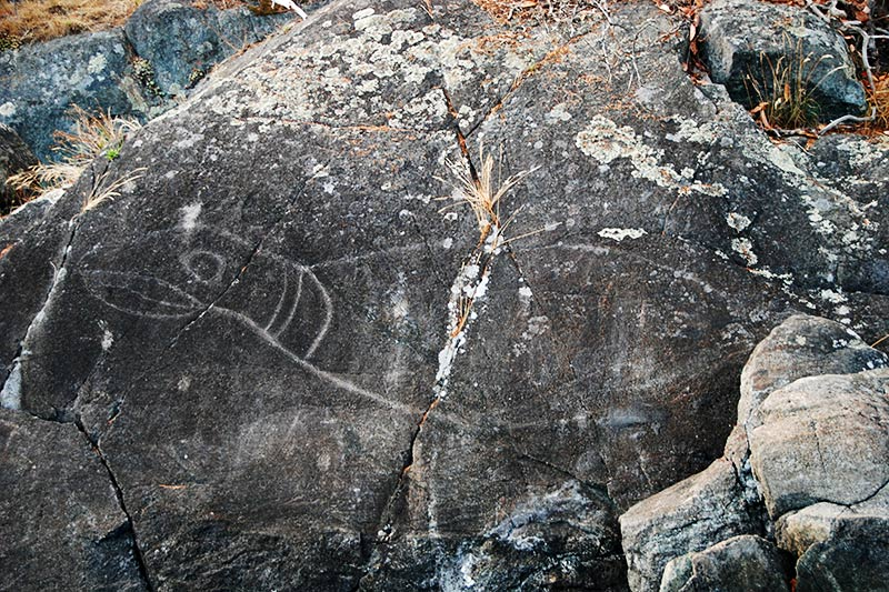 Petroglyph at Alldridge Point in East Sooke Park, Sooke, Victoria, Vancouver Island, British Columbia, Canada