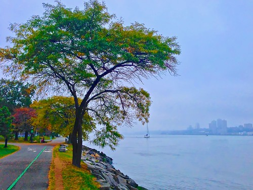hudsonriver newyorkcity newyork river water nature city urban manhattan boat travel view afternoon hazy street autumn travelphotography streetphotography sunset photography scenic nyc usa ny riverside park landscape hudson trees path