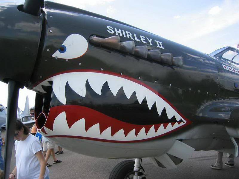 Curtiss P-40 (5)