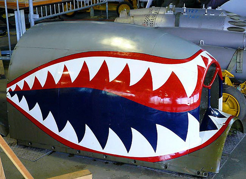 Curtiss P-40 Warhawk 22 (30)