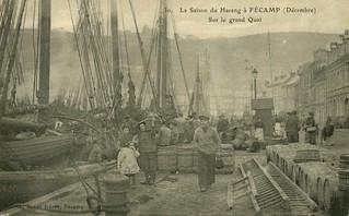 Fécamp: saison du hareng sur le Grand Quai   by Simenon.com