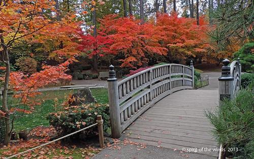 autumn fall japanesegarden spokanewashingtonstate