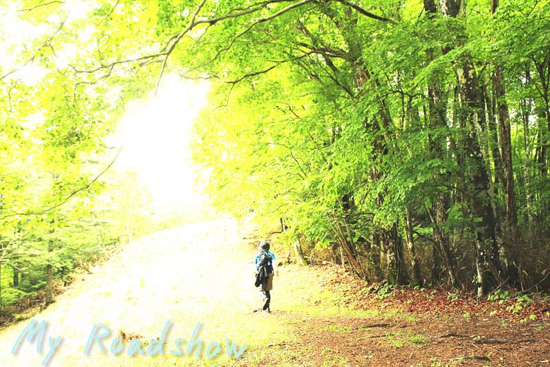 梅雨の登山_07