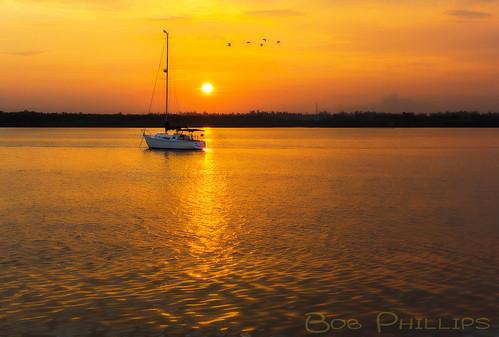usa gulfofmexico birds sailboat sunrise florida matlacha pineisland pineislandsound