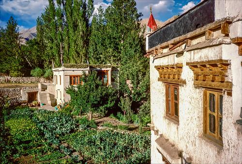 india mountains film sunshine analog 35mm landscapes nikon himalaya leh ladakh guesthouse kodachrome64 nikonaf3