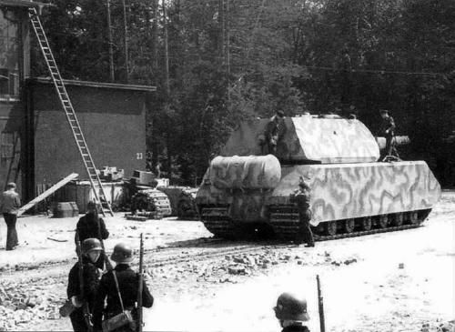 The last photo of Maus in Nazi-hands