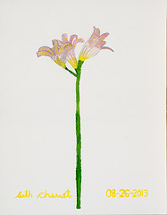 Naked Lady Flower (12.5 x 16 watercolor on paper)