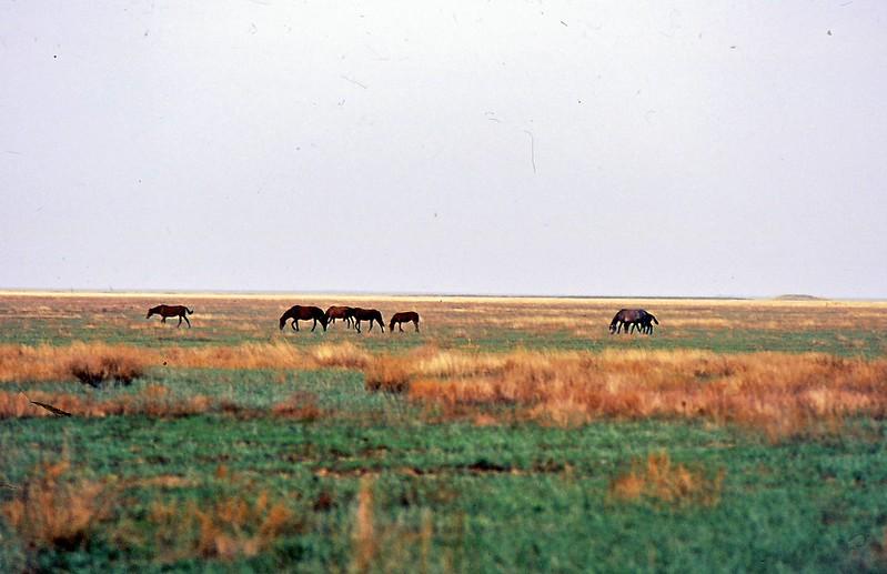 Uralsk2001-0028