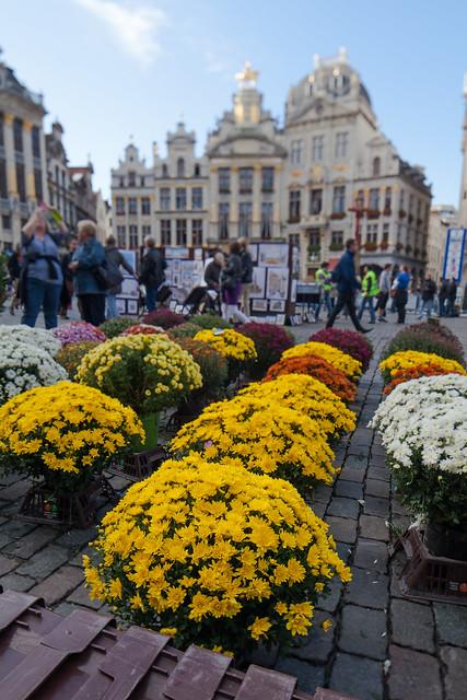 Marché aux fleurs, Grand-place de Bruxelles