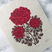"""NEW! The """"RUBY RED ROSE"""" Woodcut Print by Tugboat Printshop"""