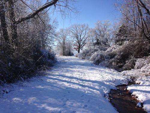 winter snow cold beautiful alabama huntsvilleal {vision}:{outdoor}=0989 {vision}:{sky}=092 {vision}:{mountain}=0774 {vision}:{street}=0657 {vision}:{snow}=0721