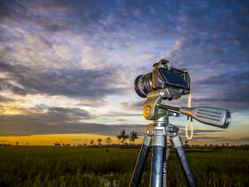 camera sky nature clouds sunrise landscape nikon bokeh tripod nex6 flickrandroidapp:filter=none p7700
