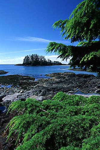 Schooner Cove, Pacific Rim, West Coast Vancouver Island, British Columbia, Canada