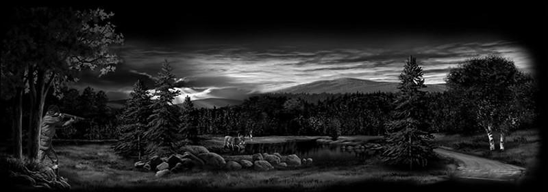 Hunter lake forest