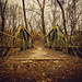 Bridge to Nowhere by Anthonypresley1
