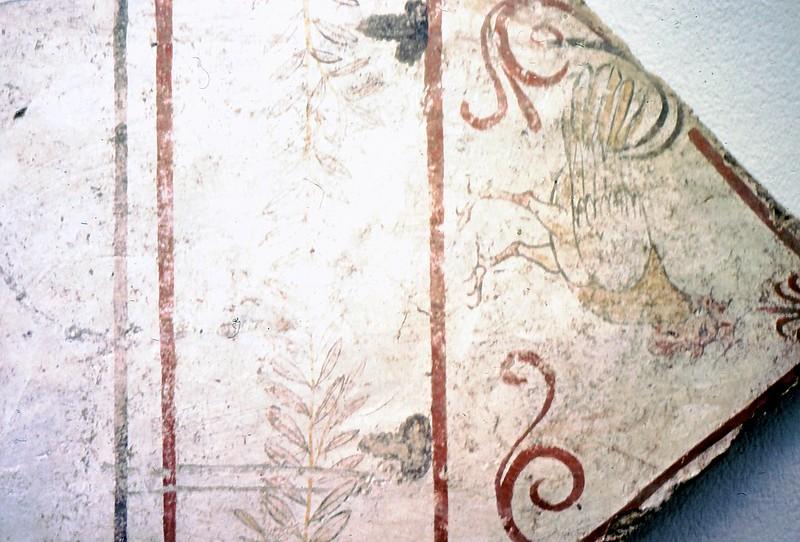 Paestum01-0024