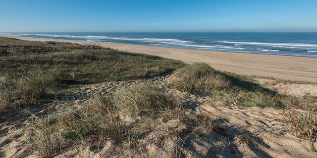 L'océan et les dunes - matin d'automne