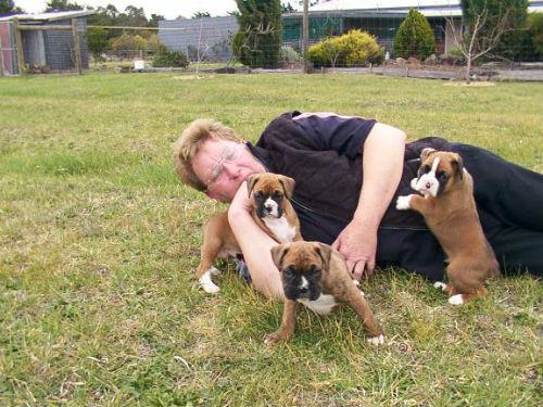 Arthur with Lexie x Hadj pups - Archer on the right