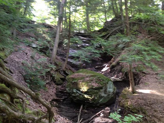 Northeast Ohio is beautiful.