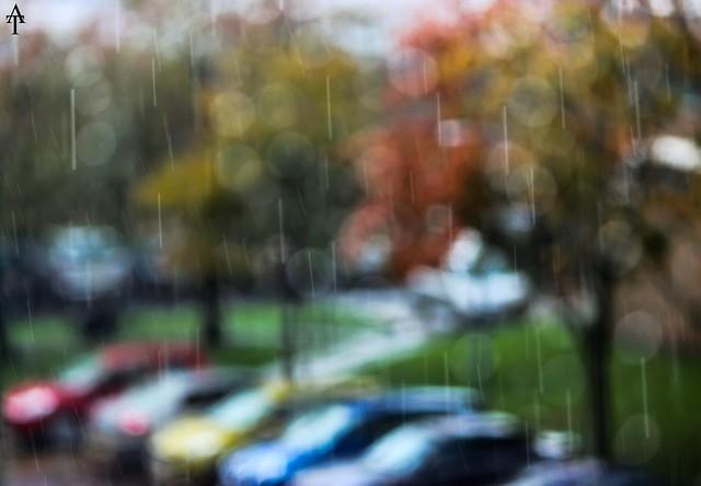 Autumn Rain . . .