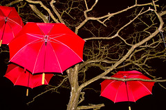umbrellas at night