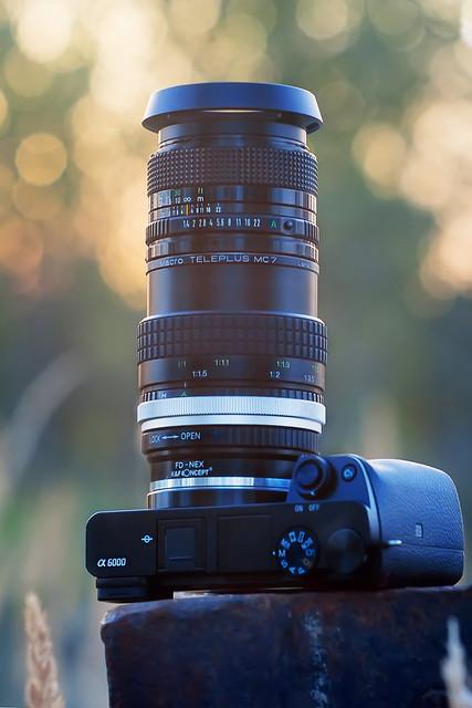 CANON nFD 50mm ƒ/1.4 & Kenko-Tokina 2x CFE Macro Teleplus MC7 on SONY ⍺6000