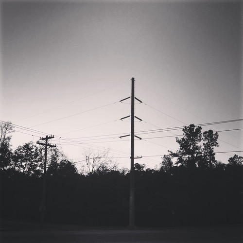 morning trees white black bus sunrise stop iphone instagram