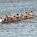2014 Fall, Textile River Regatta, Mens Novice 8+