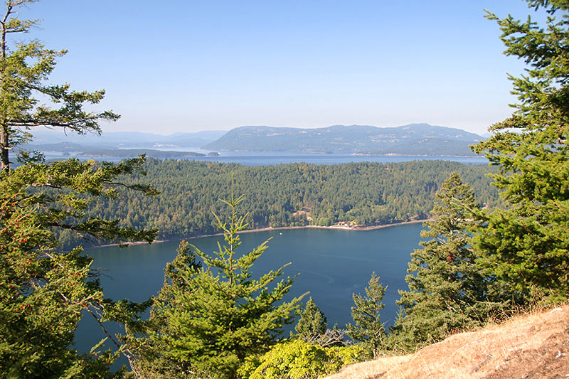 View of Bedwell Harbour in Mount Norman Park, South Pender Island, Gulf Islands National Park, British Columbia, Canada