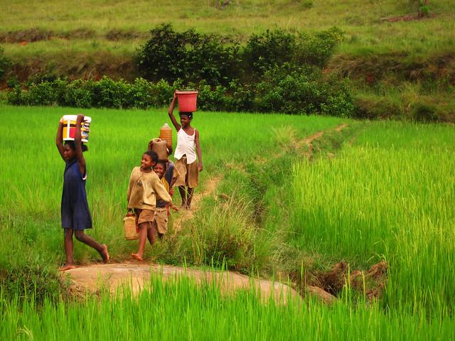 Madagascar2010 - 03