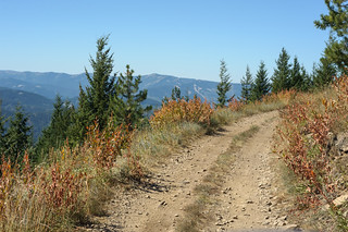 Trail 16